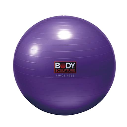 55CM GYM BALL