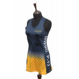 NETBALL DRESS 1.png