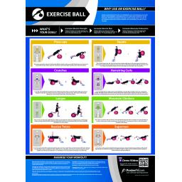 EXERCISE BALL.jpg