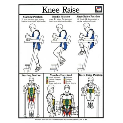 KNEE RAISES FITNESS CHART