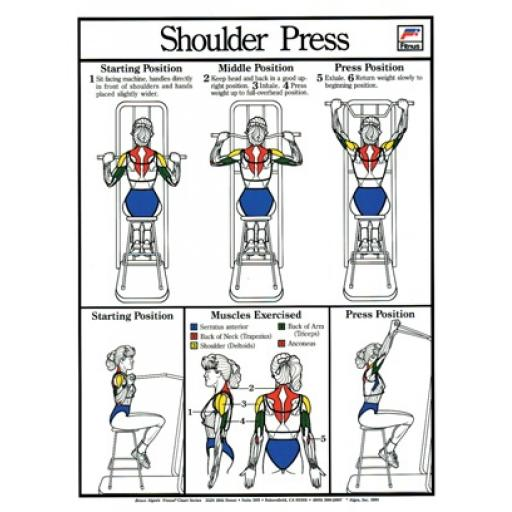SHOULDER PRESS FITNESS CHART