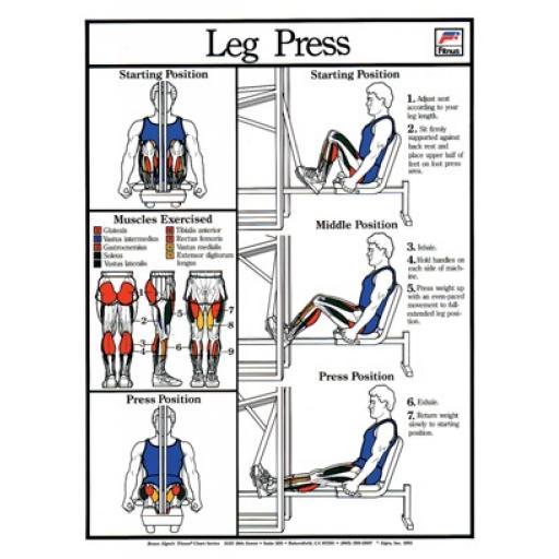LESS PRESS FITNESS CHART